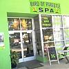 Bird of Paradise Massage